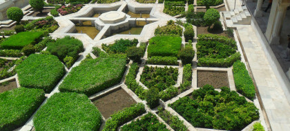 cultivated patio maze